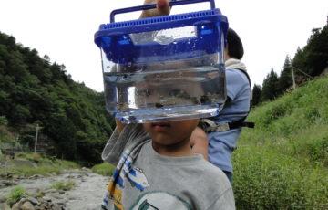 OISAKOの川の生き物を調べよう