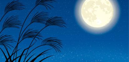 お月見キャンプ