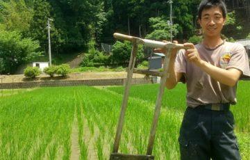 第二回「草抜き作業」森んこ田んぼ